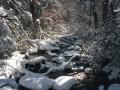 photos_winter4