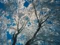 photos_winter7